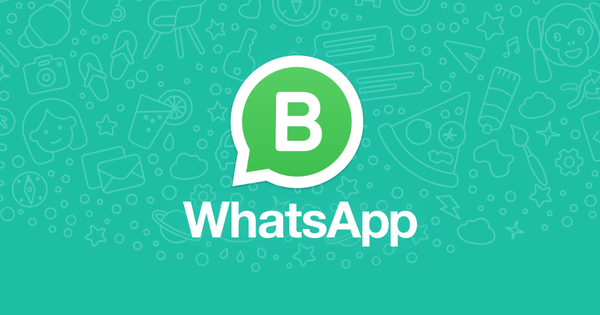 How to Get Started with the WhatsApp Business App